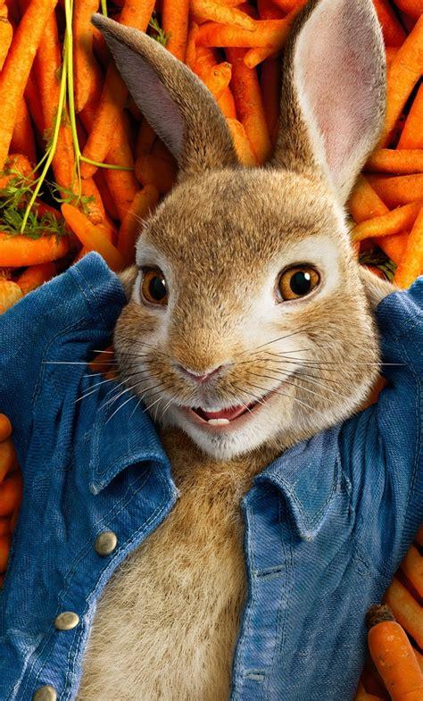 Rabbit free movies Image