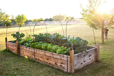 Raised bed garden plans lowes Image