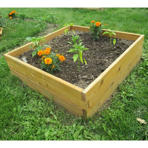 Raised garden bed cedar Image