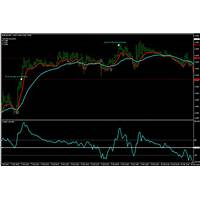 Real make money forex profit pro sells like candy! scam?