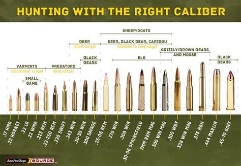 Recoil Of Long Range Rifle