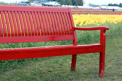 Red bench designs Image