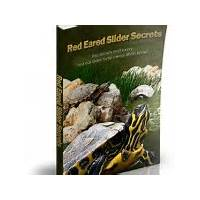 Red eared slider secrets promo