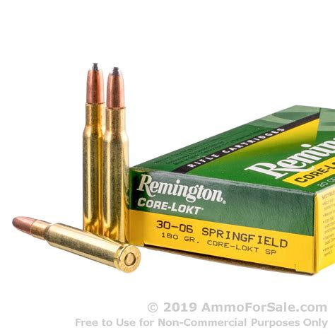 Remington Springfield 3006 Ammo