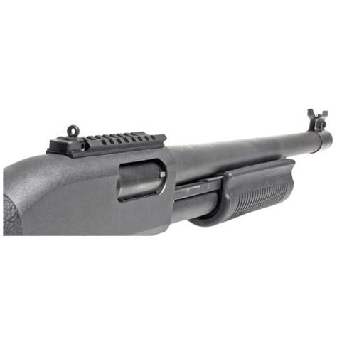 Remington Xs Ghost Ring Sight And Rail