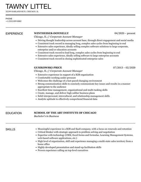 16 Digital Marketing Resume Template Sample Job Resume Samples