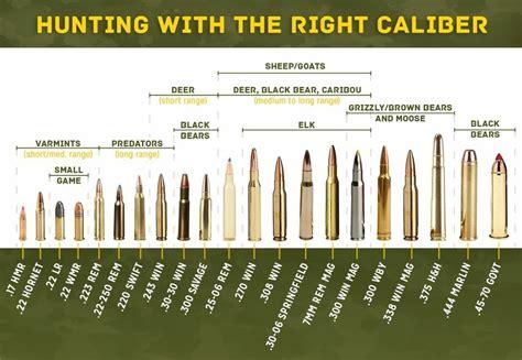 Rifle Ammo Animal Chart