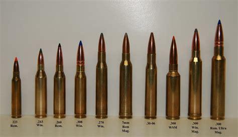 Rifle Ammunition 223 5 56mm 270 308 3006
