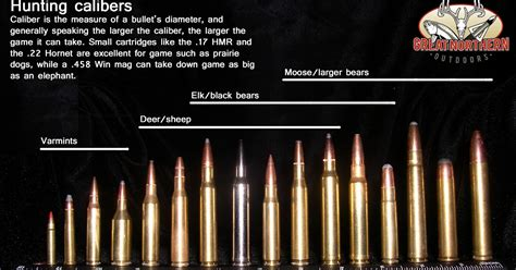 Rifle Calibers In Order By Power