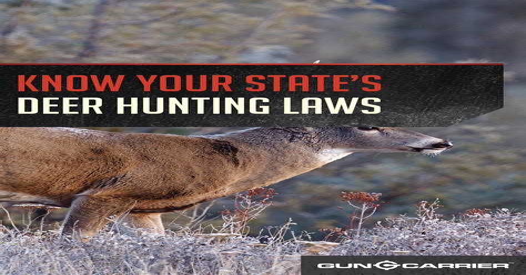 Rifle Hunting Laws