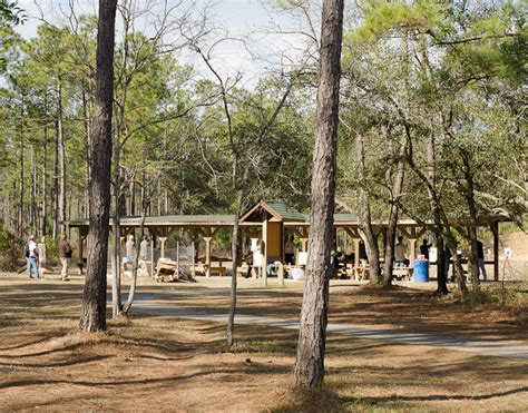 Rifle Range Francis Marion Forest