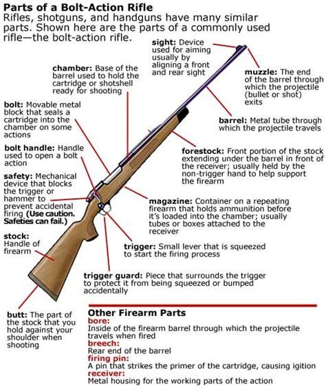 Rifle Stock Parts Names