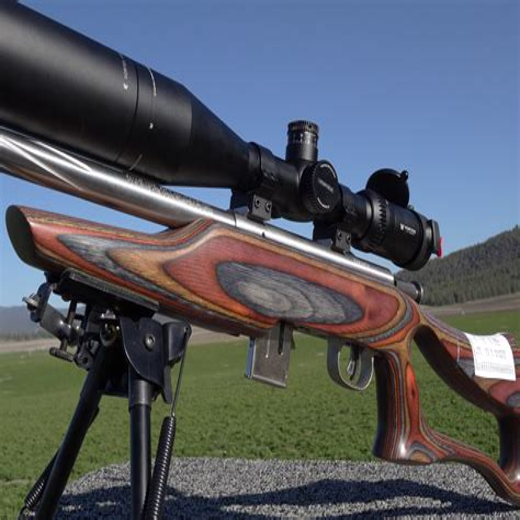 Rimfire Rifle Stocks