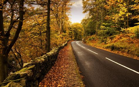 Road Wallpaper HD Wallpapers Download Free Images Wallpaper [1000image.com]