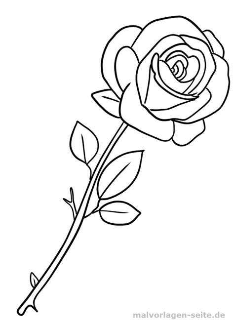 Rose Malvorlage