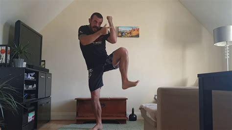 Roundhouse Kick Gun Self Defense