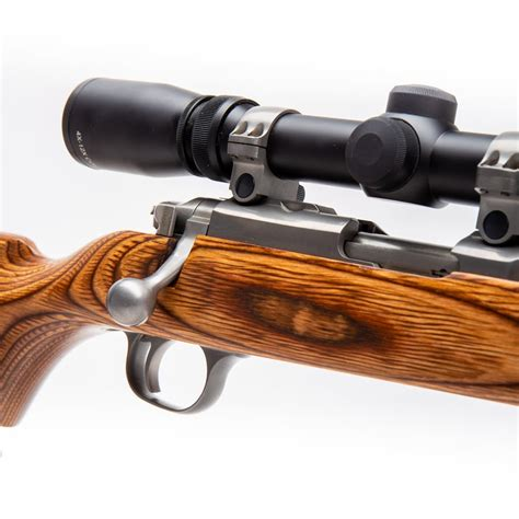 Ruger Allweather 22 Rifle For Sle