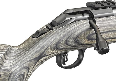 Ruger American Rimfire Target Rifle Accuracy
