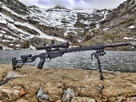Ruger Precision 22 Rifle Price