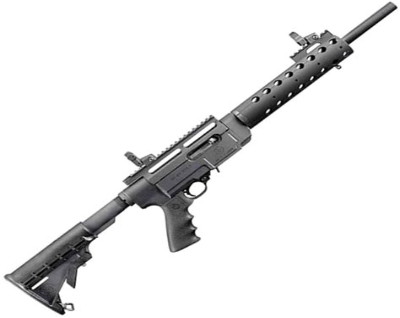 Ruger Sr22 Rifle Breakdown