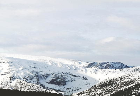 S687el S687eell Tiro Competition Sinclair Intl