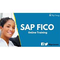 Sap fico training online ttaining secret codes
