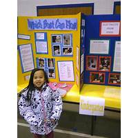 Science fair projects made easy work or scam?