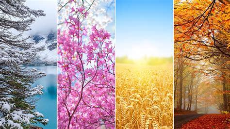 Seasons Wallpaper HD Wallpapers Download Free Images Wallpaper [1000image.com]
