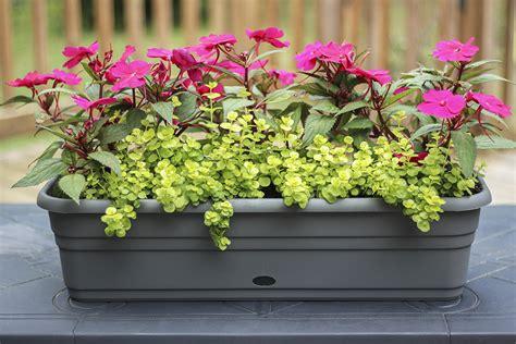 Self watering deck rail planter boxes Image