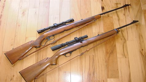 Semi Auto Deer Rifle