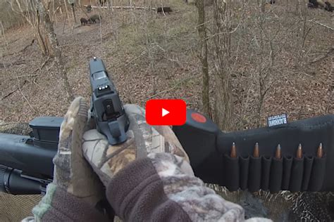 Shoot Hogs With A 45 Acp Rifle