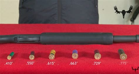 Shotgun Gauges Largest To Smallest
