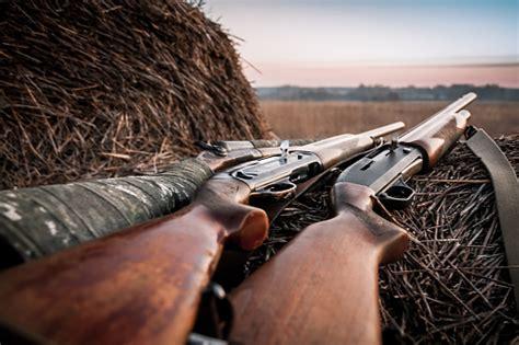 Shotgun Hunting Photo