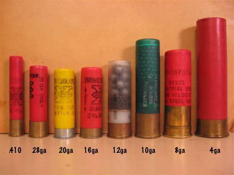 Shotgun Shell Gauge Comparison