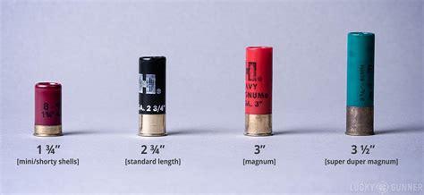 Shotgun Shells 12 Gauge Sizes