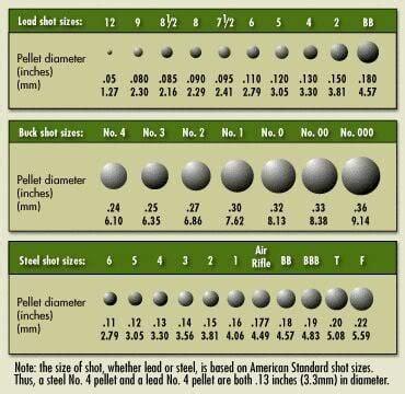 Shotgun Steel Shot Size Chart