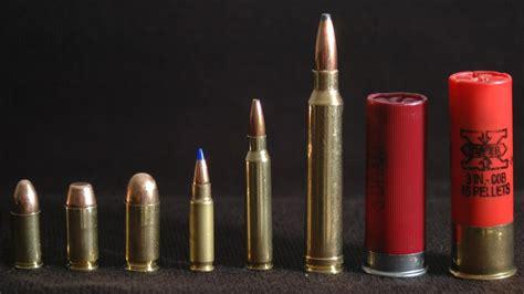 Shotgun Vs Rifle Ammo