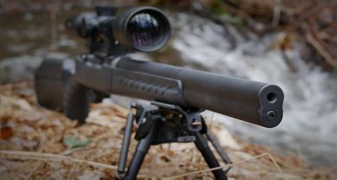 Silenced Ruger 10 22 Rifles