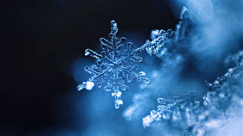 Snowflake Wallpaper HD Wallpapers Download Free Images Wallpaper [1000image.com]