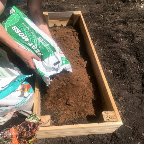 Soil for raised vegetable garden Image