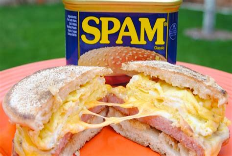 Spam Sandwich Watermelon Wallpaper Rainbow Find Free HD for Desktop [freshlhys.tk]