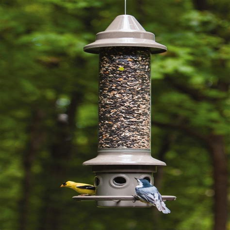 Squirrel proof bird feeder lowes Image