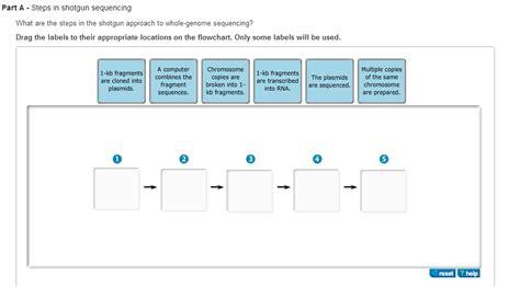 Steps In Shotgun Sequencing Mastering Biology