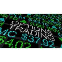 Buying stock and option trading