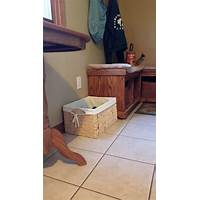 Stop the clutter bug! easy tips to declutter and simplify your life instruction