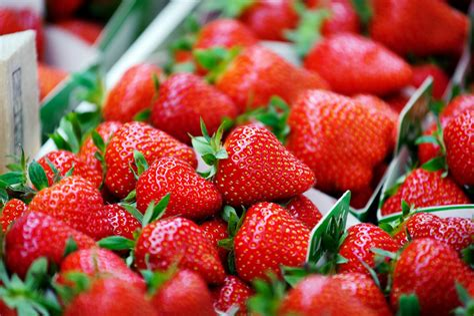 Strawberry Fields Watermelon Wallpaper Rainbow Find Free HD for Desktop [freshlhys.tk]