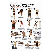 Compare stretch ninja full body dynamic stretching for athletes