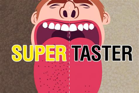 Supertaster Watermelon Wallpaper Rainbow Find Free HD for Desktop [freshlhys.tk]