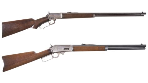 The Division 2 Lever Action Rifle