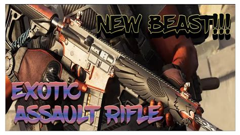 The Division Exotic Assault Rifle
